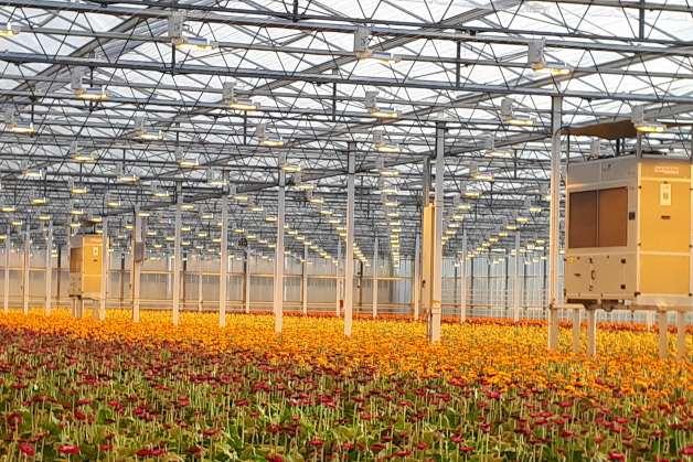 Controlar la humedad de un invernadero hasta en verano