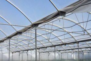 El riego en cultivos en invernadero