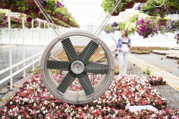 Tipos de ventilación en invernaderos